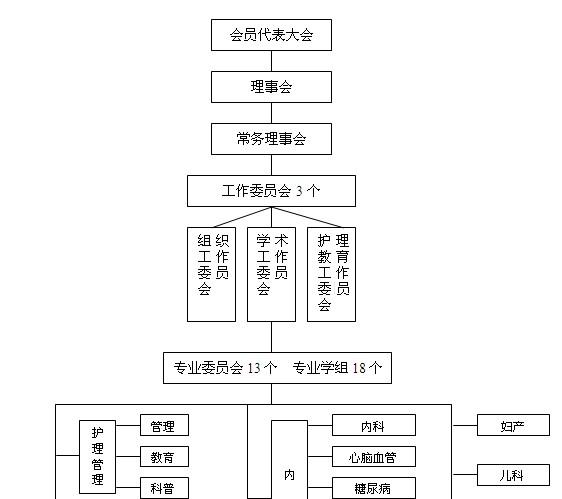 南京护理学会组织结构